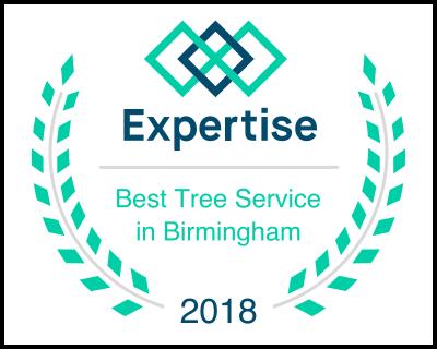 Best tree service in Birmingham 2018