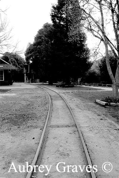 haunted Roaring Camp Railroads