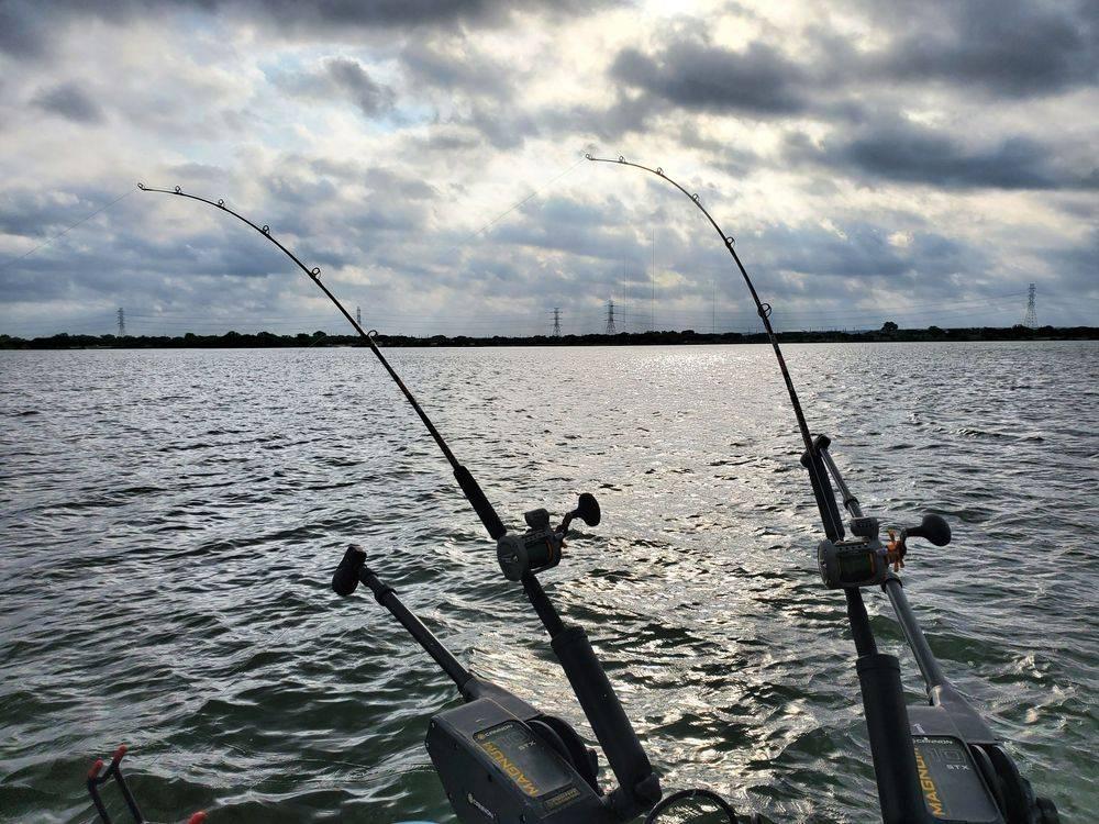 Redfish Fishing Calaveras Lake San Antonio