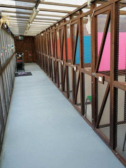 Cattery corridor for 12 chalets