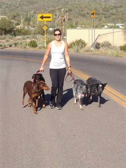 dog walker Anthem Arizona