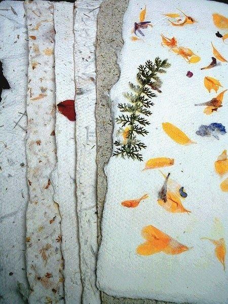 Papierschöpfen mit frischen Blüten