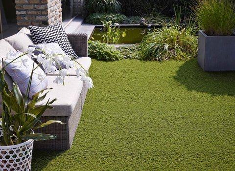 Oryzon Artificial Grass Northern Ireland