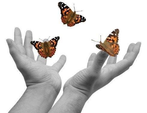 hands20releasing20butterflies