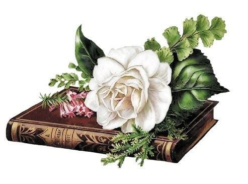 Book with flower symbolizing quiet contemplation and memories of a loved one.