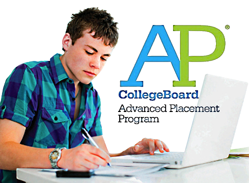 Honors, Advanced Placement, Accelerated English, Lake County, IL experienced licensed professional tutor