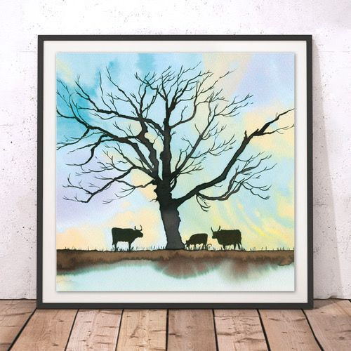 Longhorns highland cattle cow limited edition print winter calke abbey