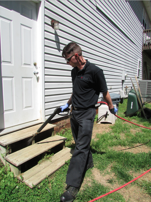 Pest Control, Mosquito Control, Bug Control, Ant Control, Wasp