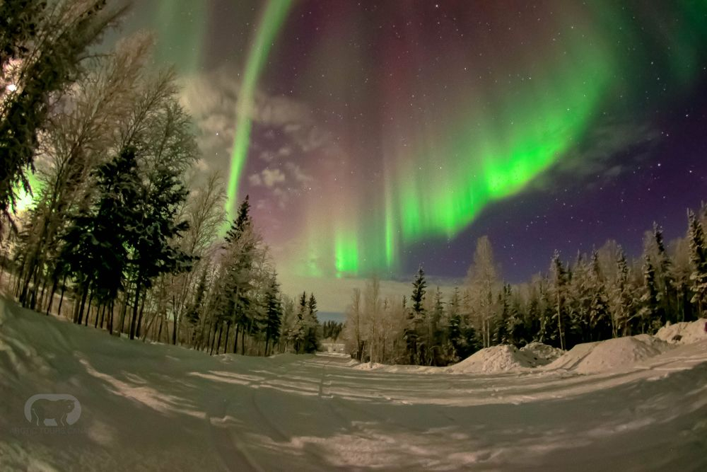 COVID-19 Trip Guide to Yellowknife