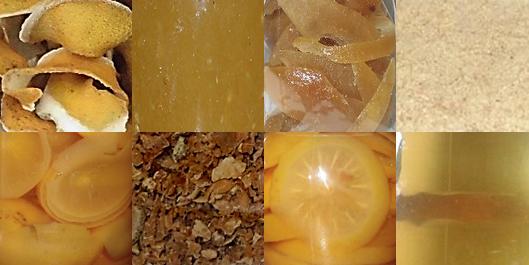 Materie prime e semilavorati di bergamotto biologico - Azienda Agricola Francesco Gangemi