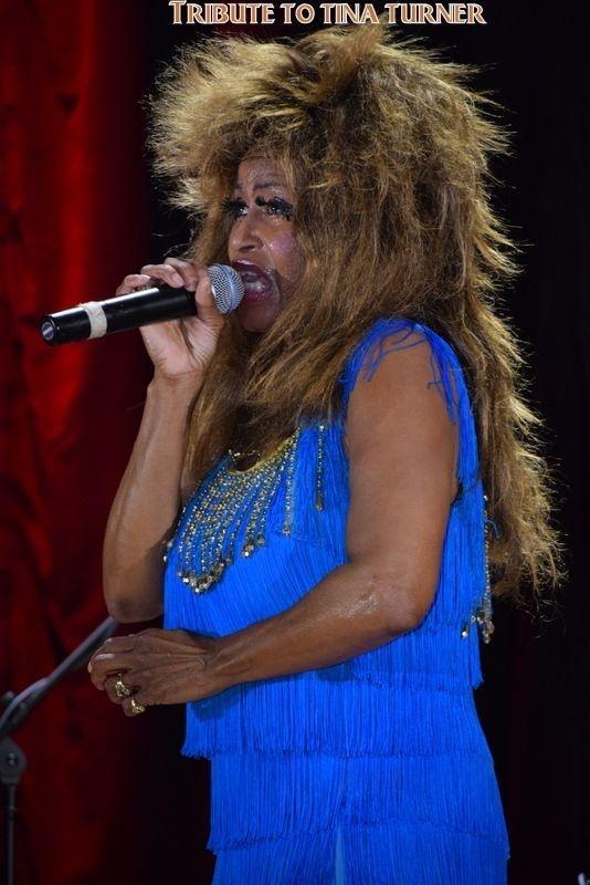 A Tribute to Tina Turner