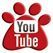 Z Dog Walkers Philly Pet Care Videos on YouTube about dog walking, daycare, and boarding .