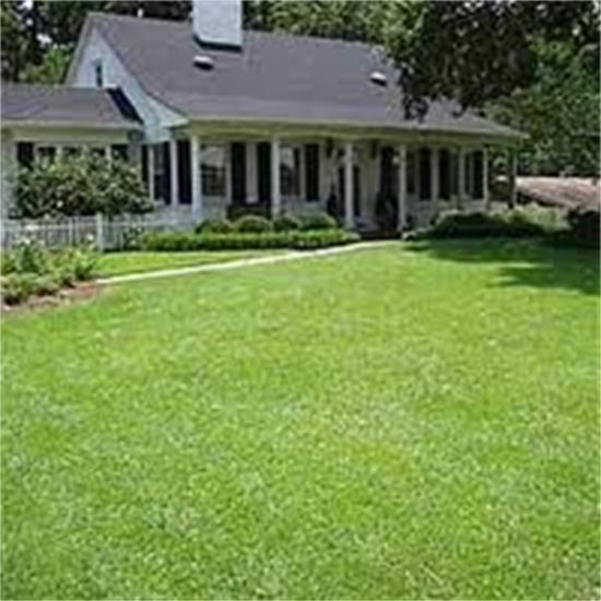 Lawn care and lawn mowing service