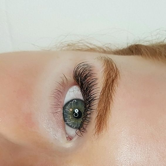 best lashes lash artist eyelash extensions halifax  nova scotia