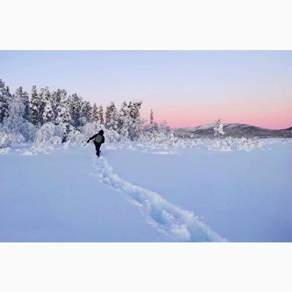 Snow shoe tour, snow shoeing Kiruna