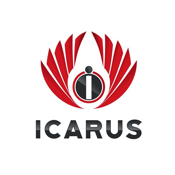 Icarus Consulting LLC