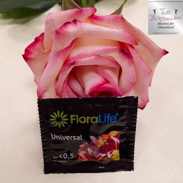 Frischhalter für Schnittblumen