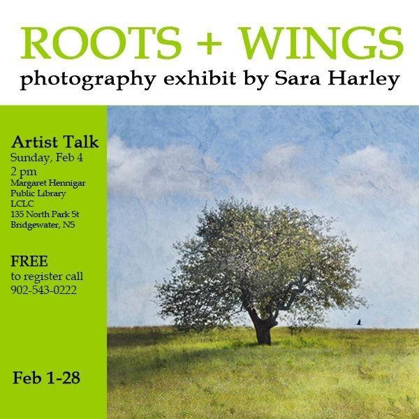 Roots+Wings Exhibit by Sara Harley