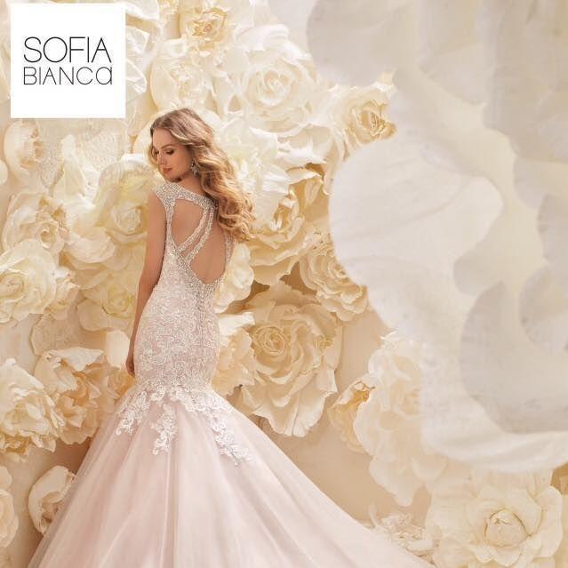Ronald Joyce wedding dresses, stunning wedding dress, open back wedding dresses, sparkly wedding dresses, fitted lace wedding dresses