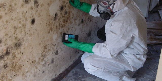 mold inspection Oakland CA