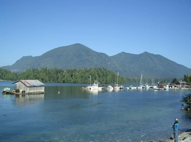 Looking across Tofino harbour to Meares Island.