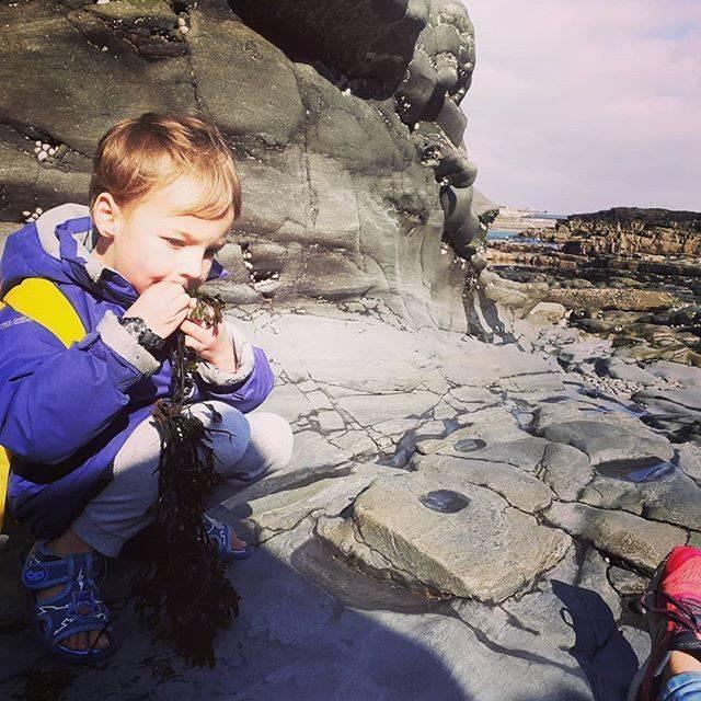 boy eats seaweed on the shore