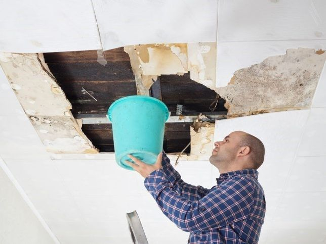 Water Damage General Contractor Services in Las Cruces