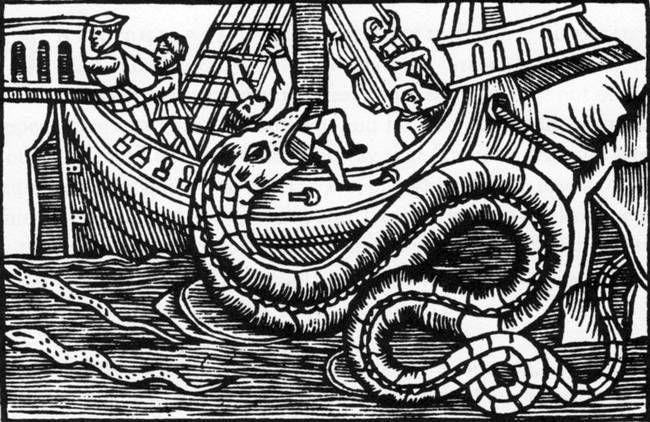 santa cruz sea monster