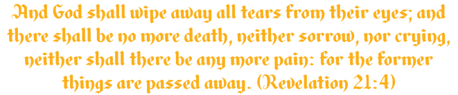 And God shall wipe away all tears from their eyes; and there shall be no more death, neither sorrow, nor crying, neither shall there be any more pain: for the former things are passed away. (Revelation 21:4)
