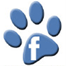 Facebook friend and like us for happy dog walking, dog day care, cat, and boarding photos