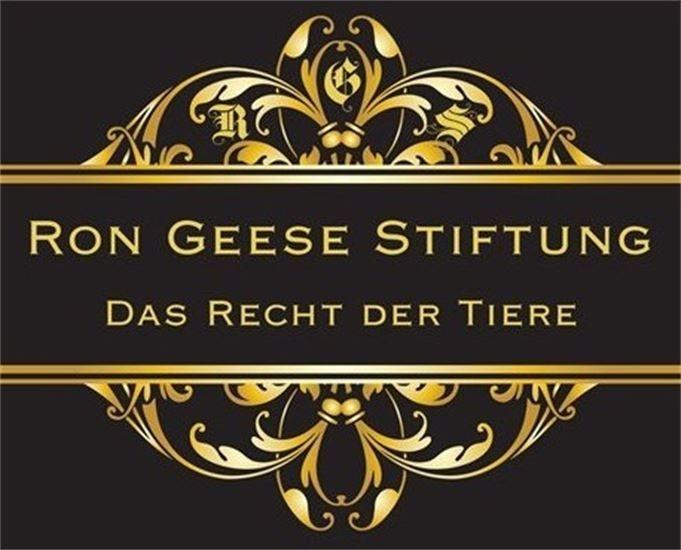 RGS Logo 27.11.13 gold dunkel