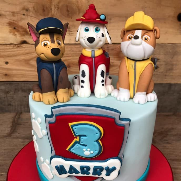 birthday cake paw patrol marshall print dog