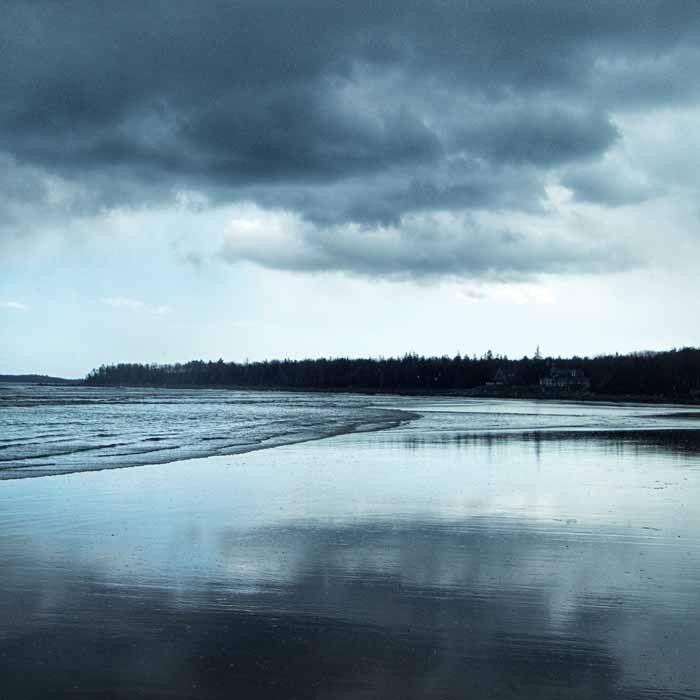 Moody Blues by Sara Harley