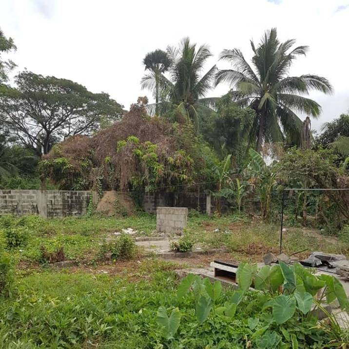 zaragoza residential/commercial lot for sale, lot for sale in zaragoza nueva ecija, house and lot for sale in zaragoza nueva ecija, residential lot for sale in zaragoza nueva ecija, commercial lot for sale in zaragoza nueva ecija