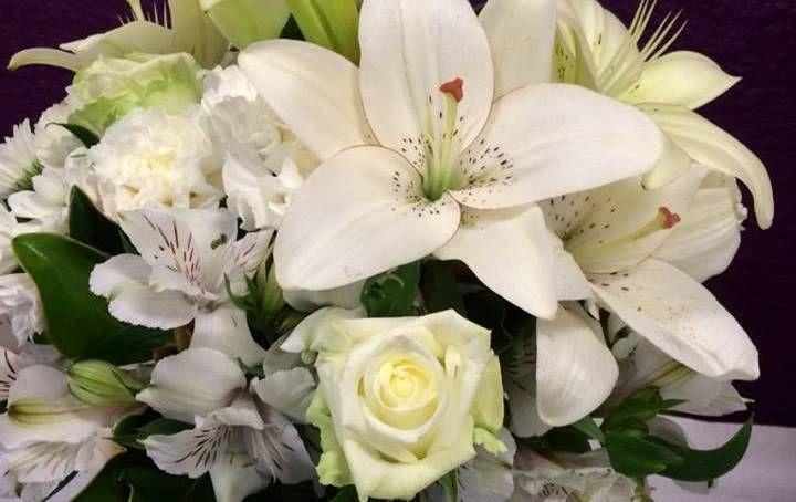 Flowers in Launceston