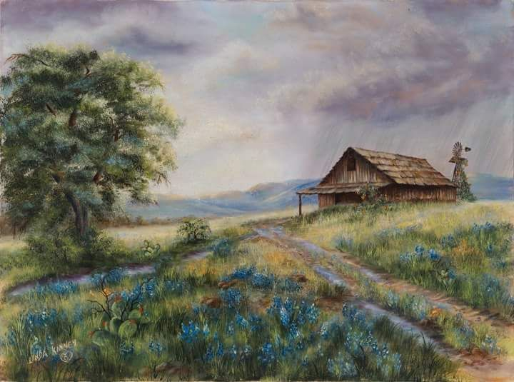 Rain, Barn, Flowers, Bluebonnets, Mesquite, Country, Road, Spring,, Hills, Clouds