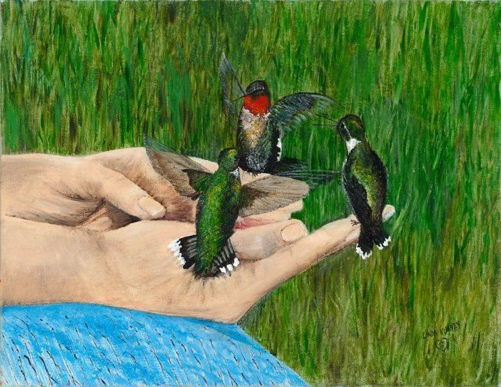 Hummingbird, Trained, Nectar, Thornbill, Green,  Hands, Perching, Summer, Blue, Small Bird