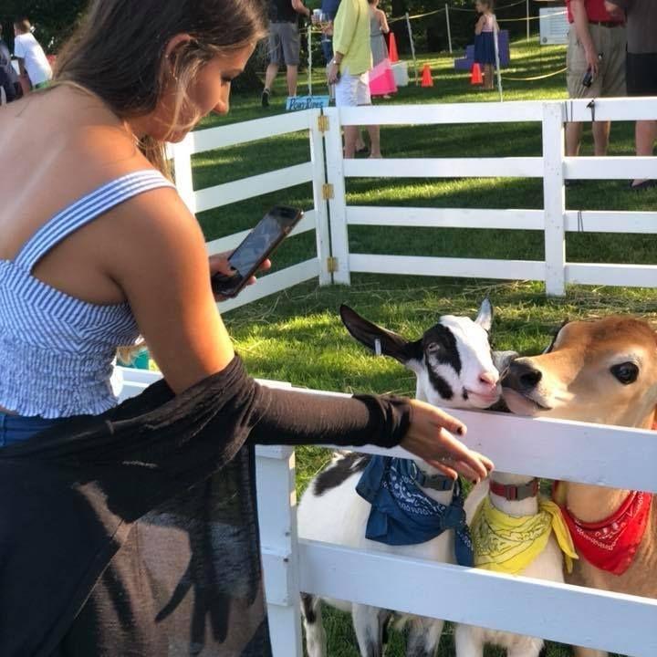 Woman petting calf