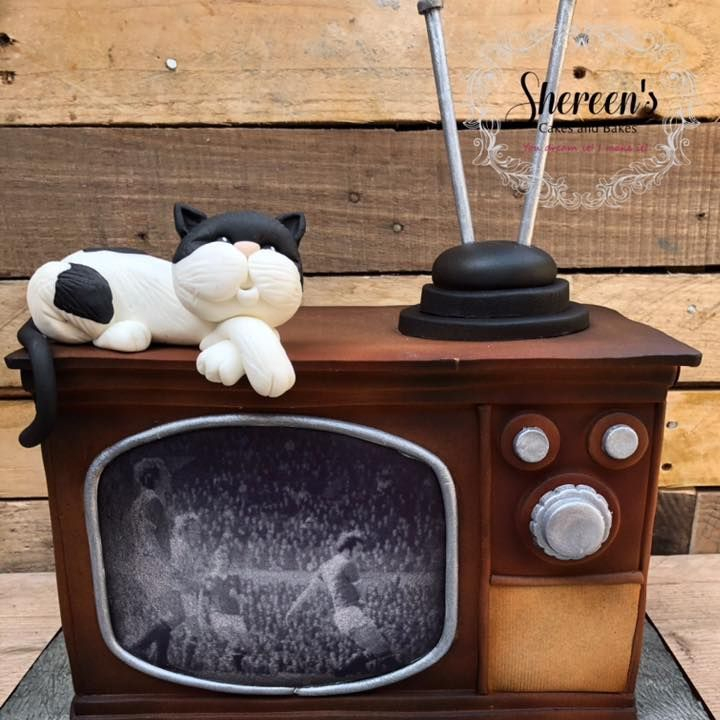 Birthday Cake vintage TV television box black and white cat