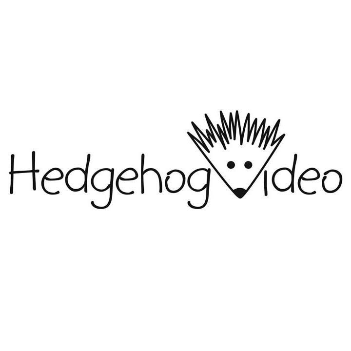 Hedgehog Video - Wedding Videographer in Dorset