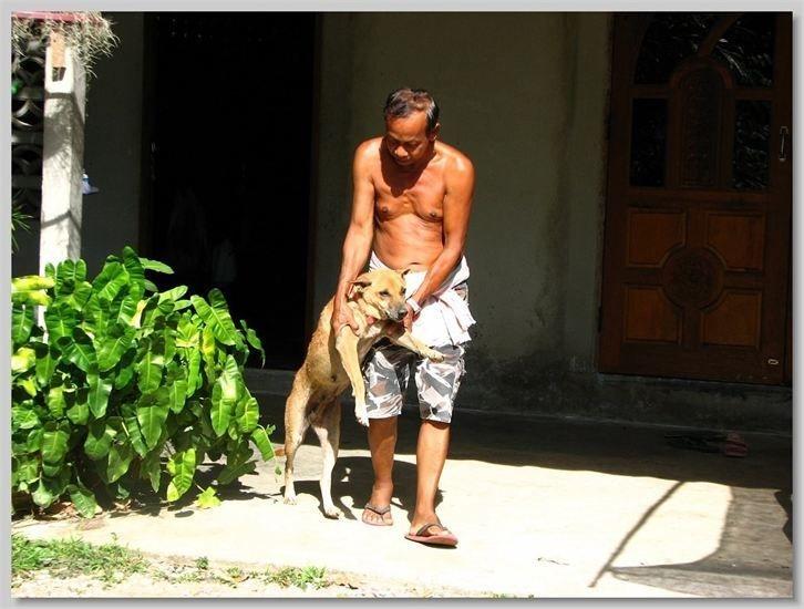 hundehilfe thailand kastr. hündin -maylin-07.05.13