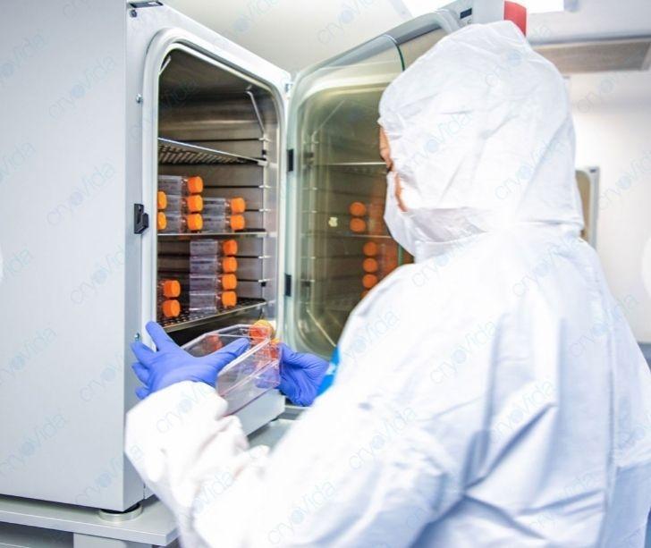 Stem Cell Implants Mazatlan Mexico