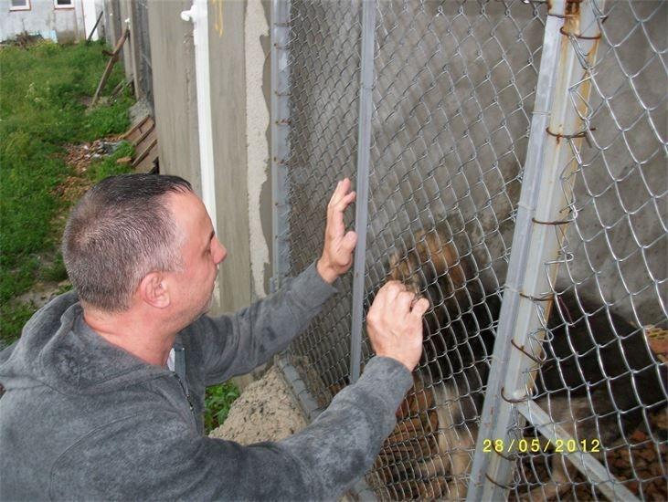 Futterspende für das Tierheim in Burgas / Bulgarien.