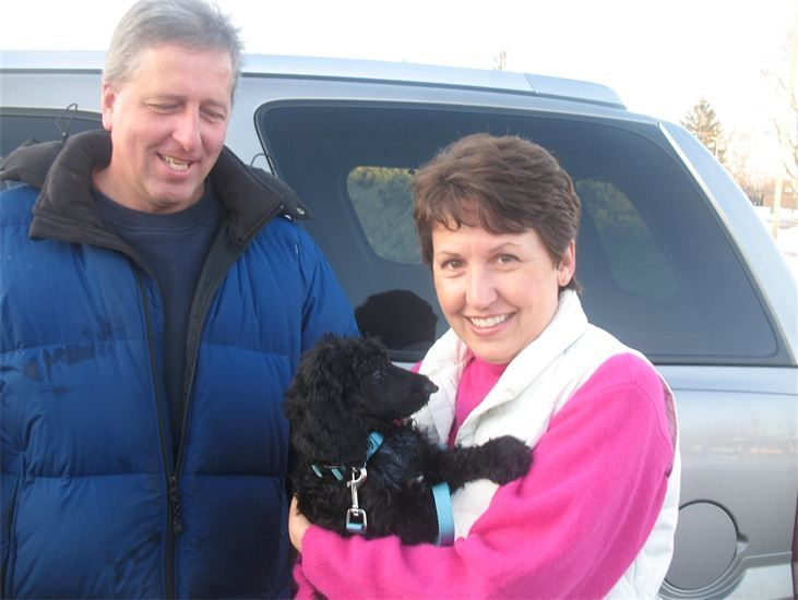 Sweet black standard poodle puppy, with white chin, with his new family.