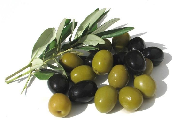 Goodness of Olives. Yes, Olives and cold pressed Extra Virgin Olive Oil are very good for your health.