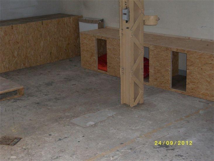 Baubeginn in der Auffangstation in Altenburg.