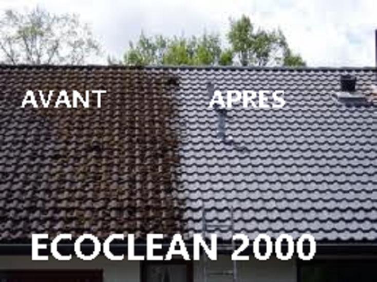 démoussage toiture ECOCLEAN 2000