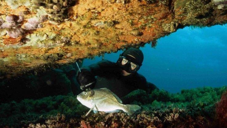 La chasse à trou s'agit d'une technique permettant de chasser le poisson directement dans sa tanière.