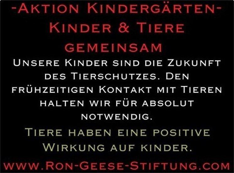 aktion kindergärten