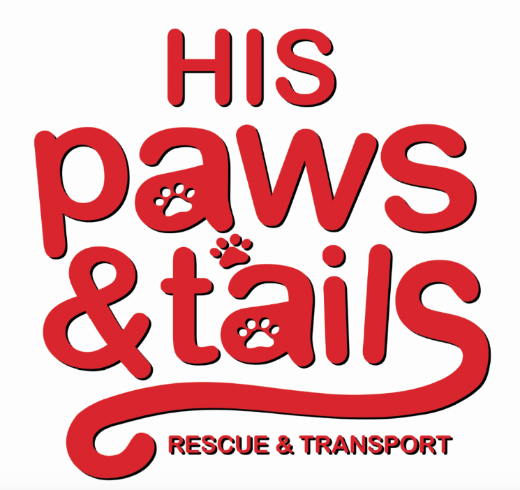 His paws & tails   Rescue and Transport